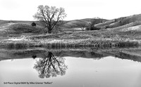 "3rd Place Digital B&W By Mike Griener ""Reflect"""