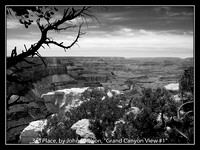 "3RD PLACE, BY JOHN PAULSON, ""GRAND CANYON VIEW #1"""