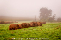 "HM, by Doug Conrad, ""Foggy Bales"""
