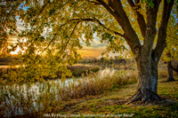 "HM, BY DOUG CONRAD, ""GOLDEN HOUR AT SNYDER BEND"""