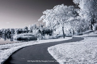 "HM Digital BW By Douglas Conrad - ""Lake Trail Infrared."""