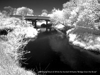 "HM Digital BW By Randall Williams ""Bridge Over the Brule"""