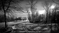 "2nd Place Digital B&W By Randall Williams ""Cross Trails"""