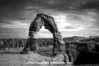 "1st Place Digital B&W By Ron Nicolls ""Arch"""