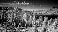 "HM Digital B&W By Randy Williams ""Lake Helen"""
