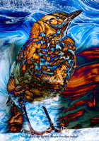 "HM Digital Color By Rich Wright ""Petrified Robin"""