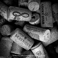 "4th Place Digital BW By Michael Greiner ""Corked"""