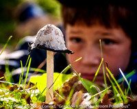"1ST PLACE, BY DOUG CONRAD, ""GRANDPA IS THAT MUSHROOM POISONOUS"""