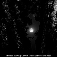 "1st Place, by Doug Conrad, ""Moon Between the Trees"""